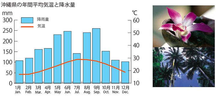 沖縄県の年間平均気温と降水量のグラフと沖縄のイメージ画像
